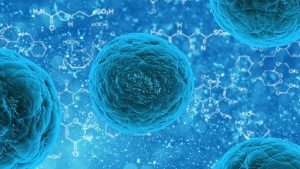 sindrome-antifosfolipido-protocolo-autoinmune
